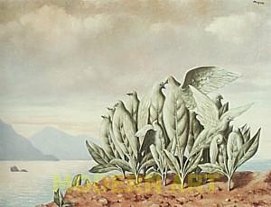 1945 treasure island les rencontres naturelles and black magic
